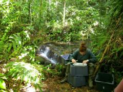 Diagnostic de l'état des peuplements aquatiques : mesures individuelles