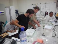 Travail  d'identification et de mensuration. Mission (IRD-CNRS-MNHN) : Programme Mangrove de Mayotte avril 2014