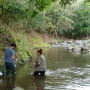 Sampling in French Caribbean rivers (Guadeloupe) during a field trip.