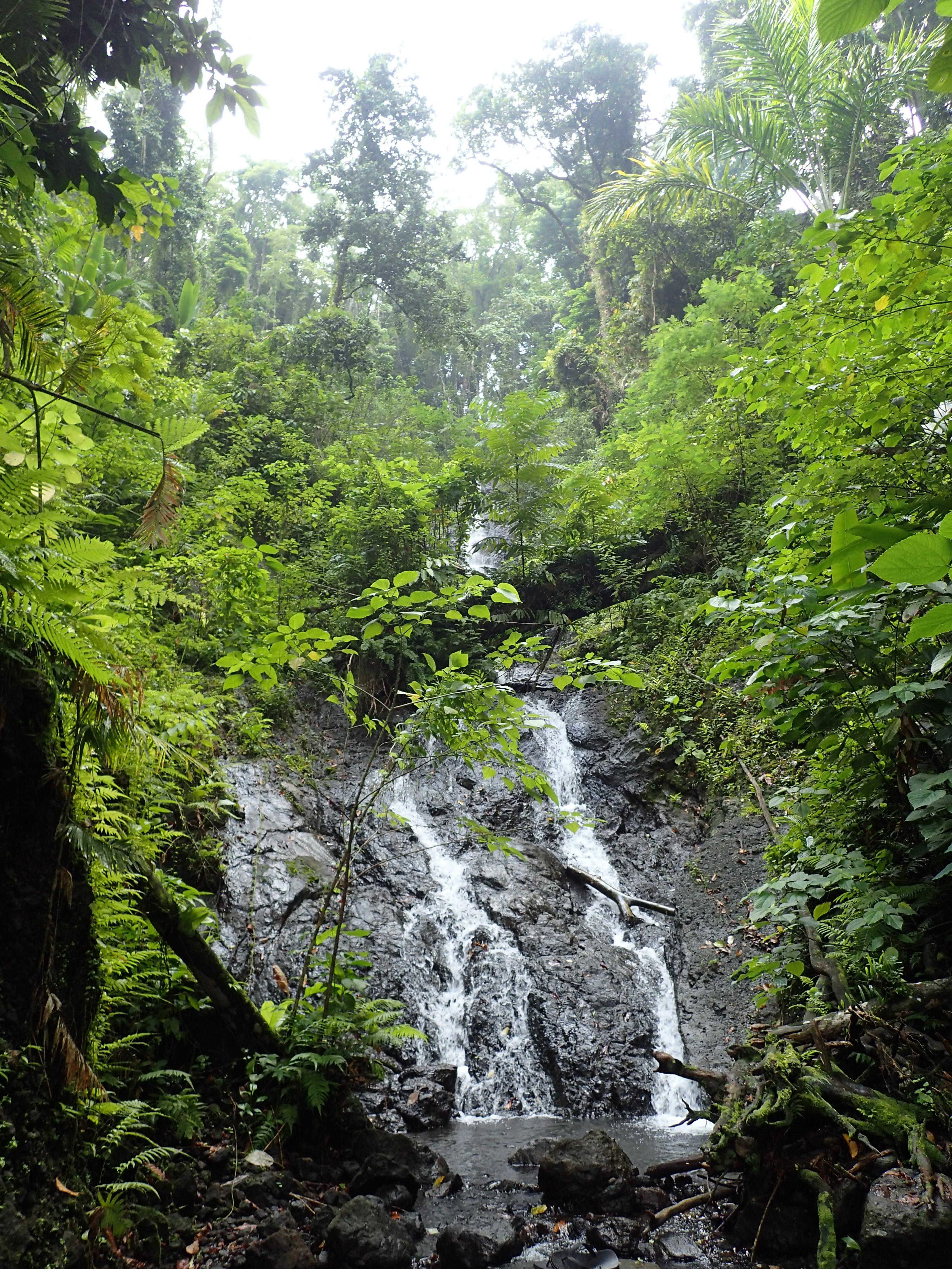 Rivière à Ranongga/Ranongga river. Photo P. Keith